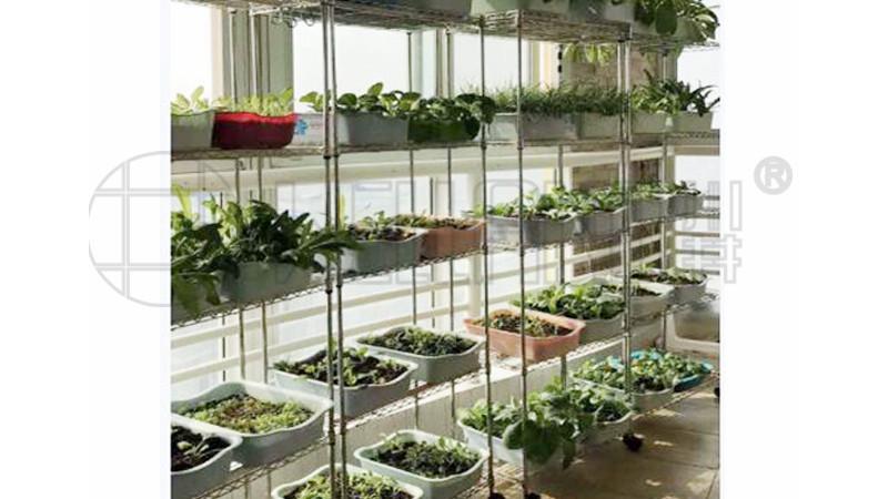 防水植物花架防锈花艺架子可淋水的铁花架