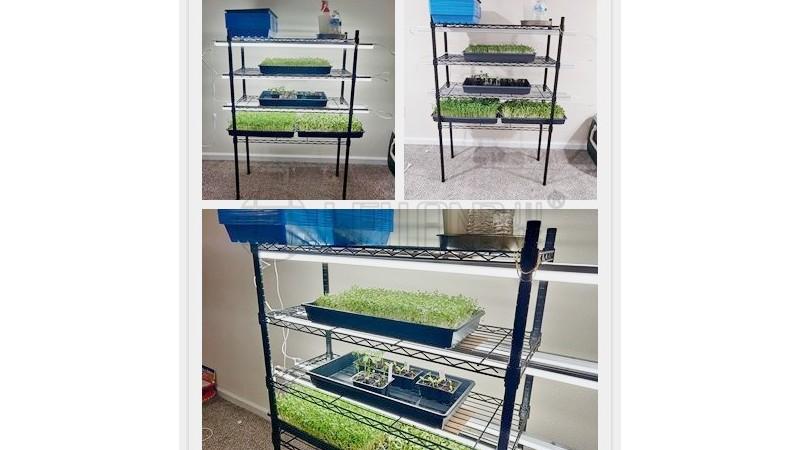 养殖蔬菜架子防锈露天种植层架可调节蘑菇蔬菜收纳架