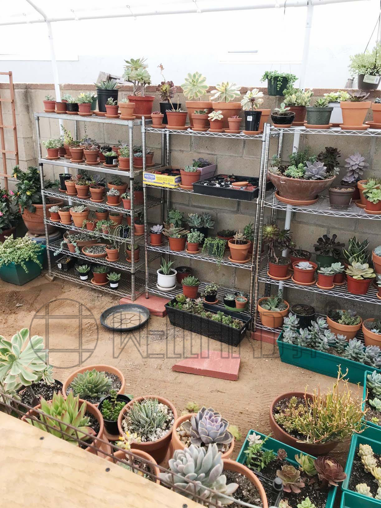 花场园艺场,花店,立体种植场,培植机构置物收纳层架-川井