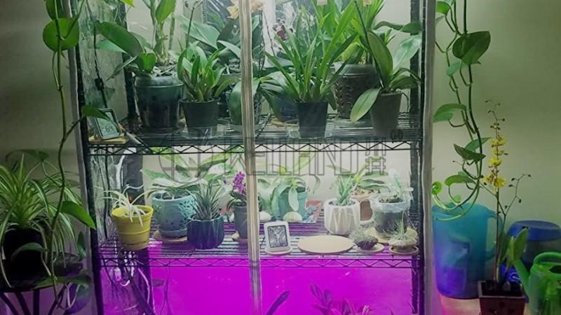 实用家用室内温室小苗置物金属植物花架 线网镀铬 不锈钢架买家分享帖